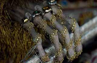 Origen de la mano peluda